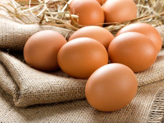 eggs_sack